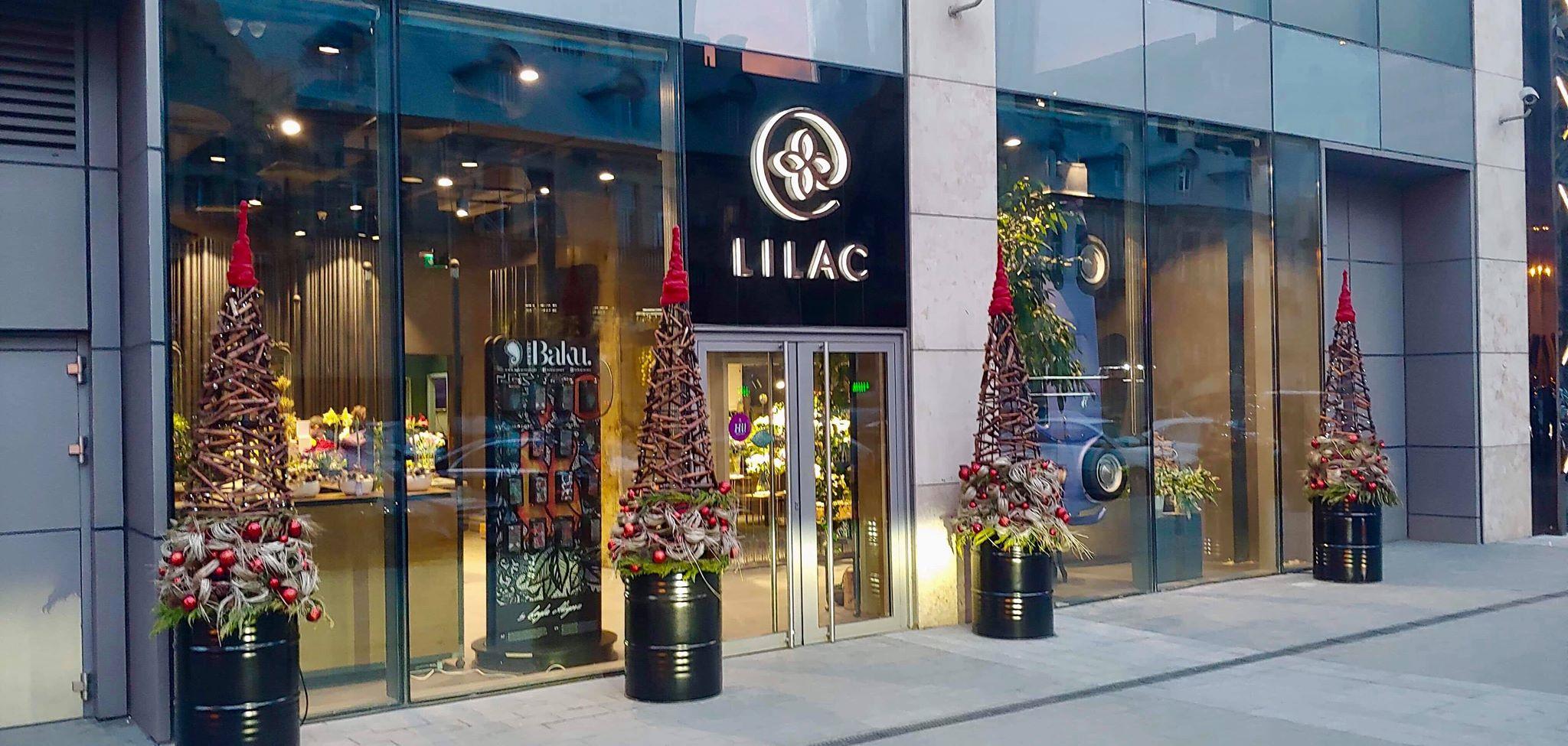 Lighting For The Lilac Flower Boutique Baku Shopping Center Port Baku Mall Nova Light